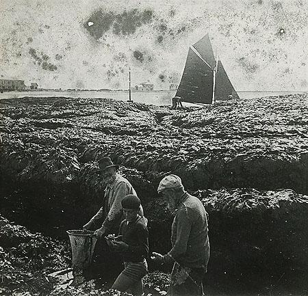 Pêche à pied sur les rochers du Tourlandroux